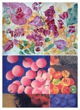 Colour Exploration and Composition