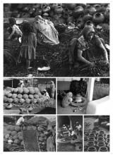 Potters Community, Ognaj, Ahmedabad, Gujarat